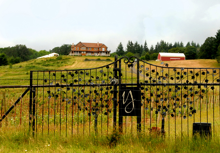 youngberg hill vineyards inoregonwinecountry