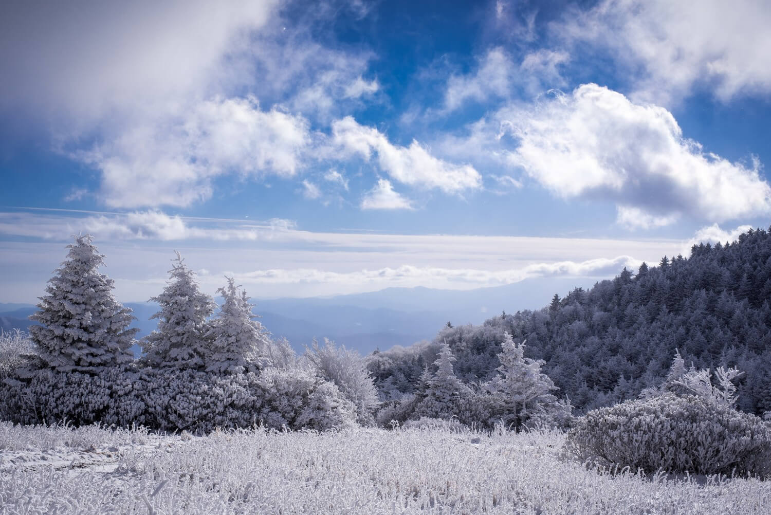 mountain skyline in the blue ridge mountains in winter