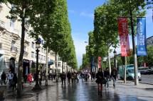 Champs Elysees Selene