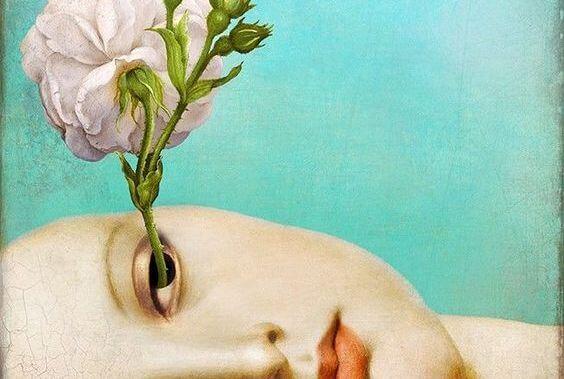 flor-saliendo-de-un-ojo-representando-los-juicios