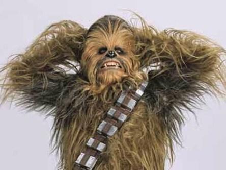 chewbacca1