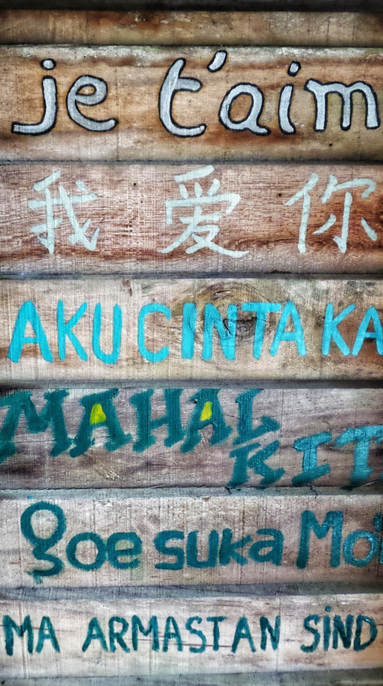 Language ownership