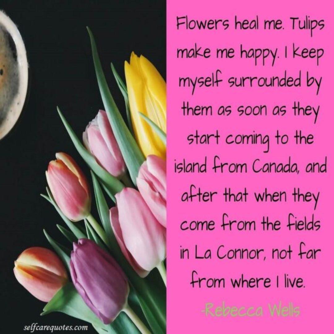 Tulip quotes-selfcarequotes