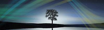 Гармоничные отношения 2- Ты и Создатель