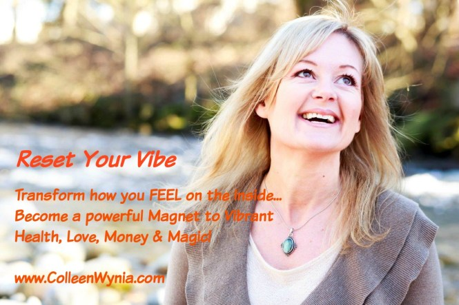 Reset Your Vibe Discovery Talk Radio show with Sara Troy - May 31 2016 (4)