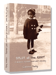 split-at-the-root-paperback-cover1