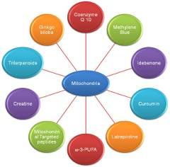Top 8 Surprising Benefits of Methylene Blue