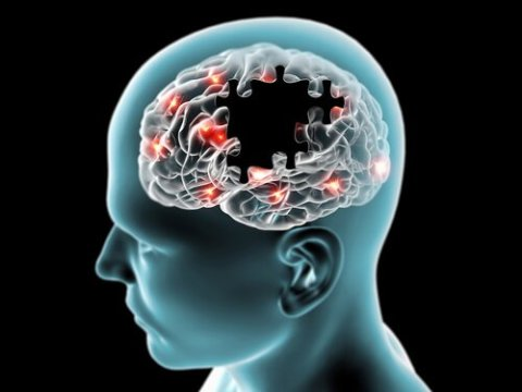 Piracetam Aniracetam Potential Side Effects Risks Selfhacked