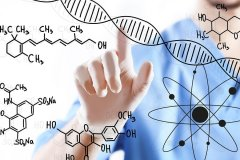 CYP3A5 Enzyme: Gene Variants & Disease Risk