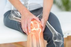 Osteocalcin: Function, Levels + What Increases or Decreases It