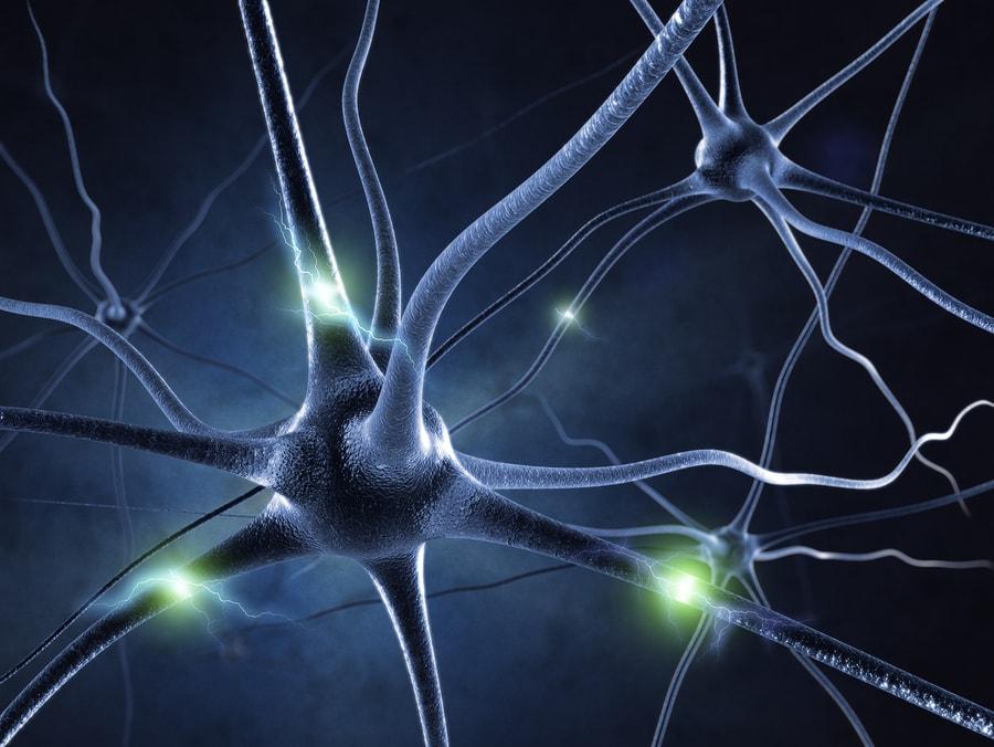 Clenbuterol and nerve damage