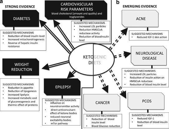 How To Get Into Ketosis For Optimal Cognitive Performance