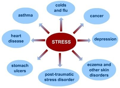 five main cause of stress Five major causes of stress everyone suffers from some level of stress in their everyday lives how you handle stressful situations and events can have a significant effect on your mental and physical health.