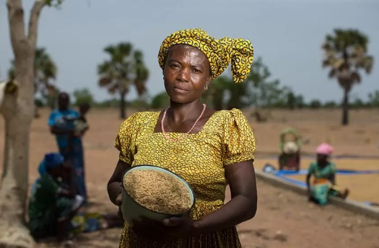 RICE BOOSTS WOMEN'S INCOME
