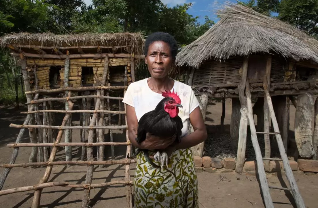 Lilian in Zambia with Chicken
