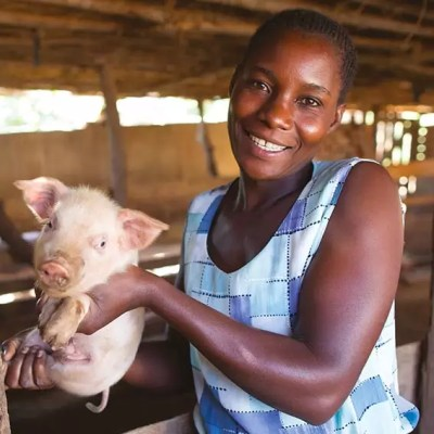 Christmas gift for Africa Piglet