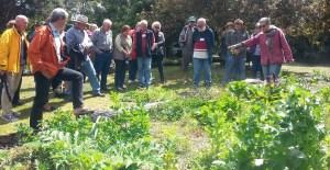 Logan Food Gardeners - Culinary and Medicinal Uses of Herbs @ selfhelp farm | Woodridge | Queensland | Australia