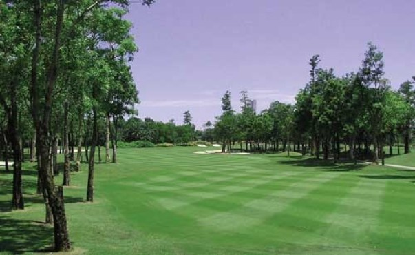 Subhapruek-Golf-Club-02
