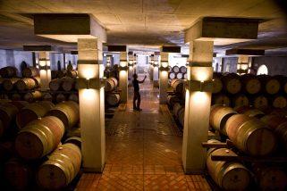 Steenberg-Wine-Cellar-2