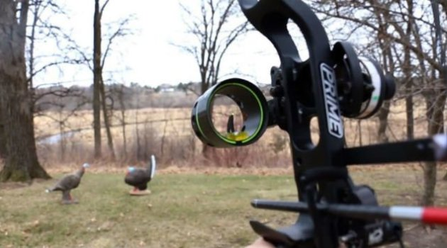 8 Best Single Pin Bow Sight For Hunting Reviews (2018 New Update)
