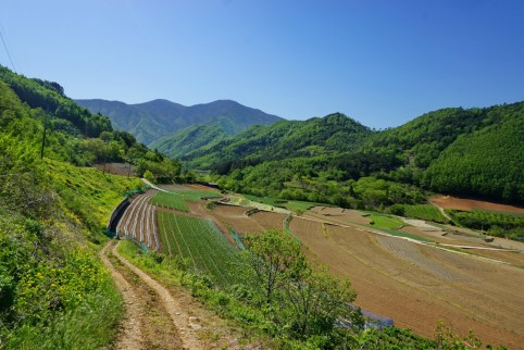 Typical Korean countryside, terraced hillsides and mountain forests. This is the hills west of Samcheok, Gangwon-do