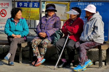 Redoubtable old ladies (ajummas - perm, visor, active wear), near Namsan, Seoul. Make no mistake, they are the country's first line of defence in case of a military invasion. Tough as old boots, they will take you out without looking at you twice. And that's just in a bus queue.