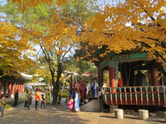 Colourful display of traditional rites in Daegu park.