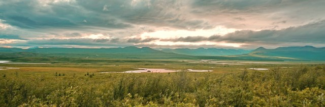 MacLaren Valley on the Denali Highway