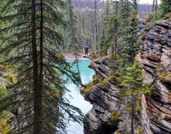 Athabasca Falls. That idiot isn't me BTW. I'd be interested how many people slip to their death for Instagram in an average year.