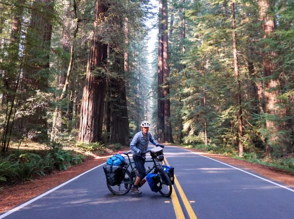 Self-timer shenanigans on Avenue of the Giants, California