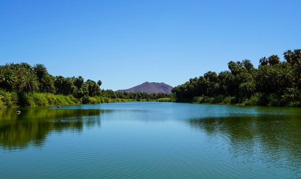 Lagoon of San Ignacio. It lies in a deep rift and was pleasantly cool down there, surrounded by baking desert