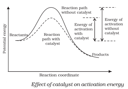 The action of the catalyst