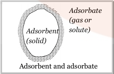 Adsorbent and adsorbate-Surface Chemistry