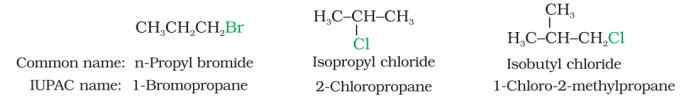 Nomenclature of Haloalkanes and Haloarenes