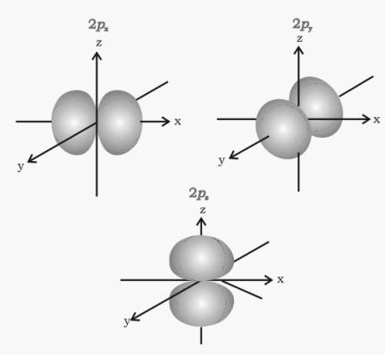 Shape of p-orbitals