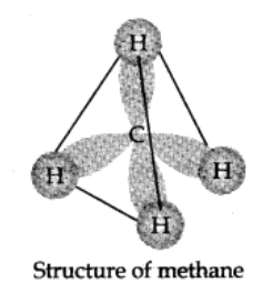 Structure of Alkanes