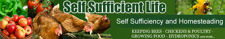 self sufficient life