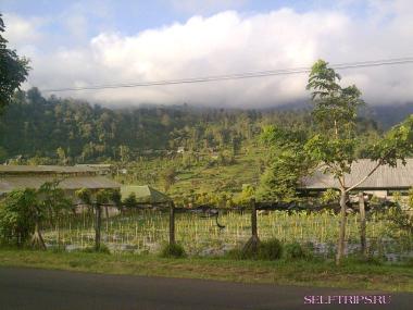 Север Бали