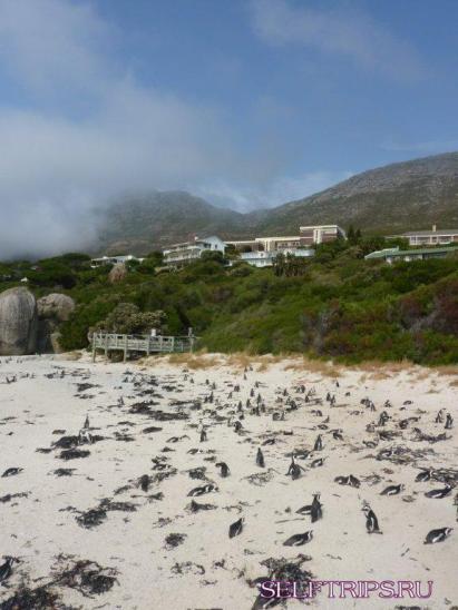 Мыс Доброй Надежды и Кейптаун.