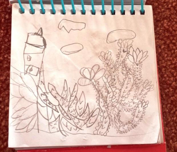 Cactii Plant I drew