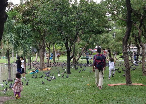 The walk through the Chatuachak Park was an added attraction for our kids who loved feeding the pigeons and ginormous fish.