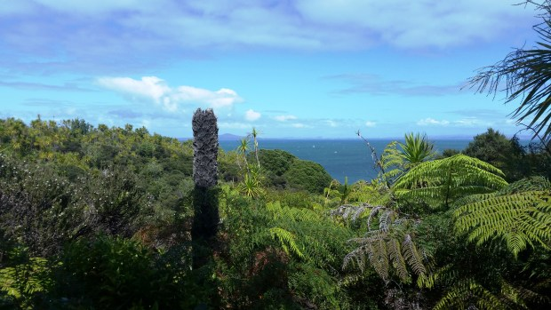 Views of the Hauraki Gulf