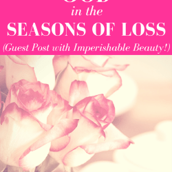 The Findings of God in the Seasons of Loss- By Selina Almodovar - Christian Relationship Blogger - Christian Relationship Coach