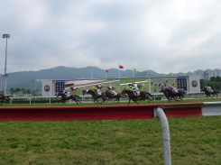 Horse races at Sha Tin Race course in Kowloon.