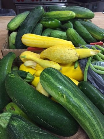 photo of food pantry donation garden zucchini
