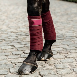 Bandes Polaires Bordeaux Kentucky