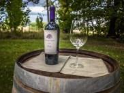 Vin Argentine_50