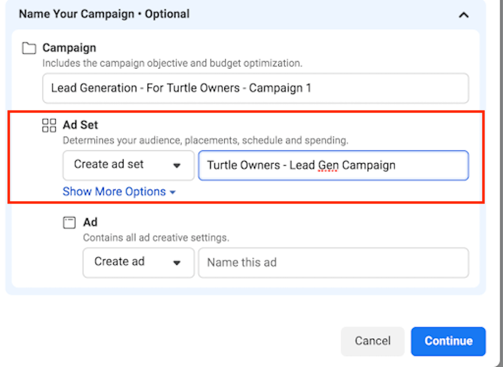 ad set name for lead ad