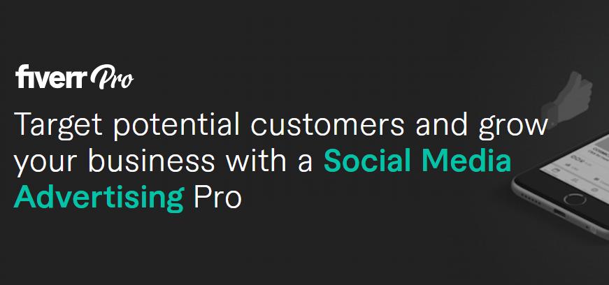 Fiverr Pro - Social Media Advertising Agencies