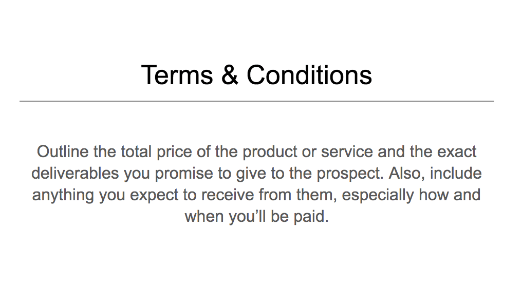 Terms Conditions example